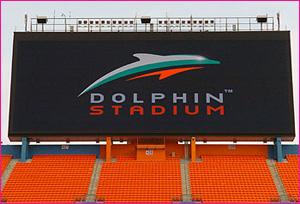 dolphin_p.jpg